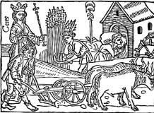 medieval farming