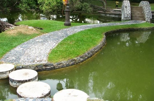The new town pond & gardens